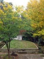 0906-bh-autumn-T